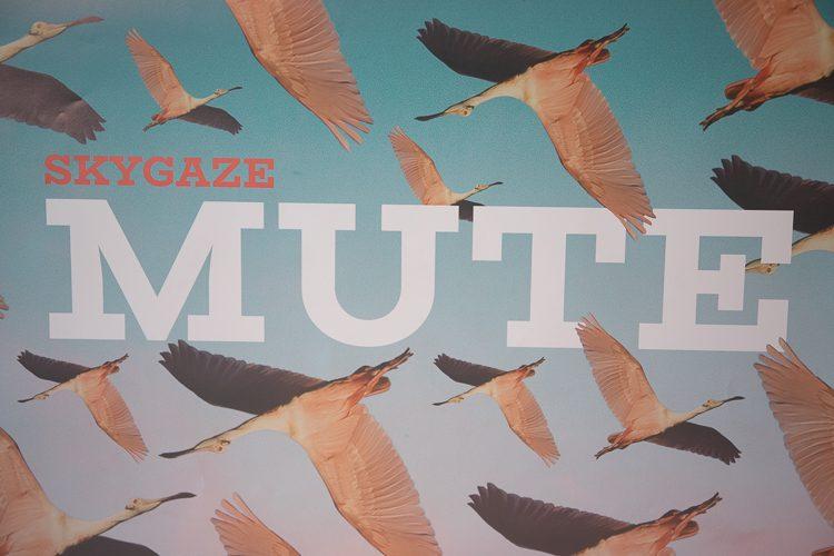 Artlist album cover